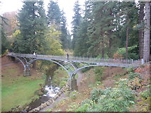 NU0702 : Northumberland Landscape : Footbridge in Cragside Estate by Richard West