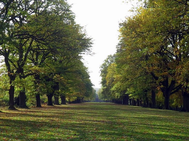 The Avenue, Gibside