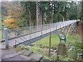 NU0702 : Northumberland Landscape : Footbridge in Cragside Estate by Richard West