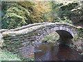 NU0702 : Northumberland Landscape : Humped Footbridge, Cragside Estate by Richard West