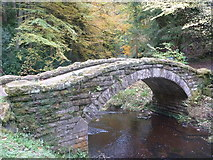 NU0702 : Northumberland Landscape : Humped Footbridge, Cragside Estate by Richard West
