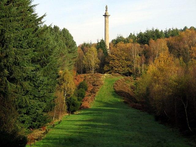 Column to Liberty, Gibside
