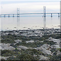 ST5188 : The foreshore at Black Rock by Robin Drayton