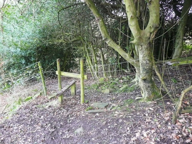 Stile on FP401 at northwest side of a thick hedge