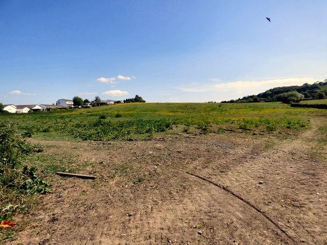 Farmland at Pinewood