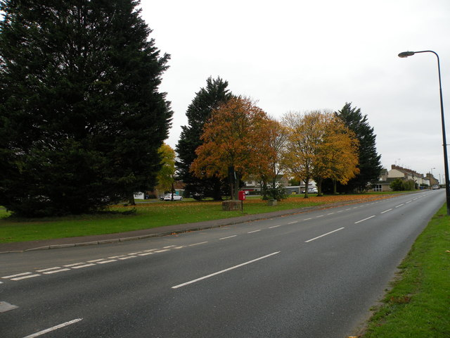 Autumn colours on Burwell Road