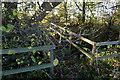 SE7756 : Footbridge over Awnhams Beck by Ian S