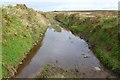SW4235 : Track near Bosullow Common by Philip Halling
