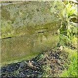 SK3030 : Bench mark, All Saints' Church, Findern by Alan Murray-Rust