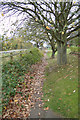 TM3669 : Path to the A1120 Yoxford Road by Adrian Cable