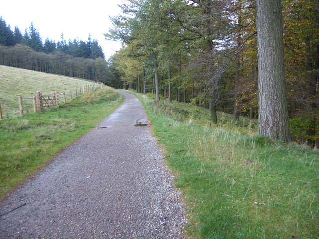 The path to Slippery Stones