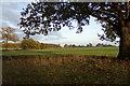 TM3768 : Farmland off Green Road by Adrian Cable