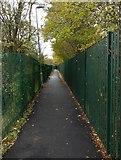 SK5501 : Footpath next to the Lubbesthorpe Brook by Mat Fascione