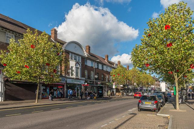 Orpington High Street - poppies