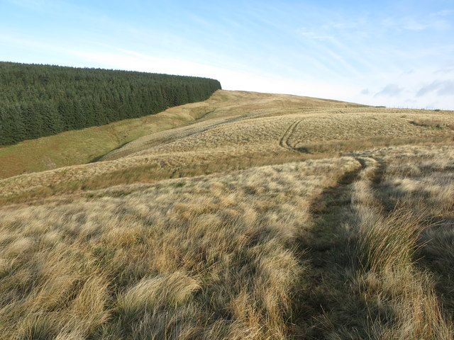Quad track heading towards Wether Cairn