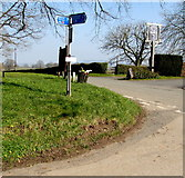 SO4430 : Cycle Route 46 signpost on a Kilpeck corner, Herefordshire by Jaggery