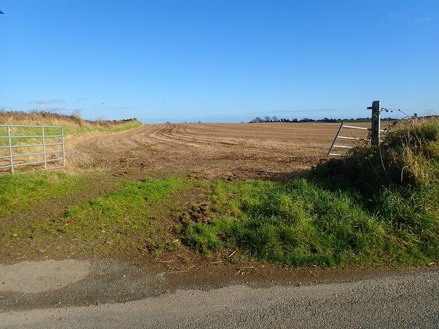 Ploughed field at Ballinamara