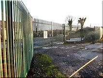 S6354 : Roadside Fence by kevin higgins