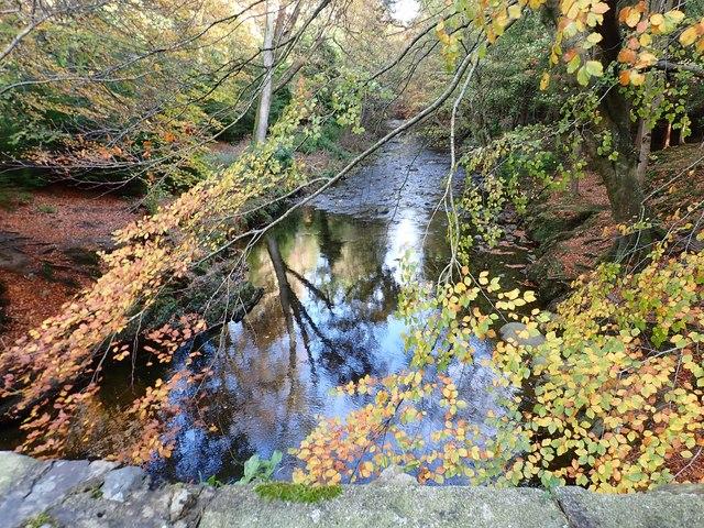 The Shimna River immediately below Ivy Bridge