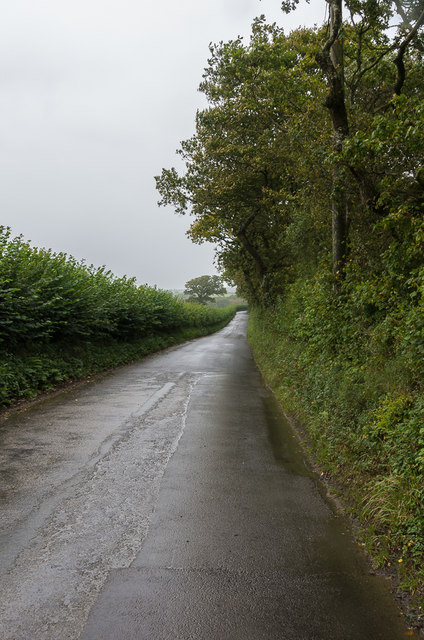 Lane north of Egloskerry