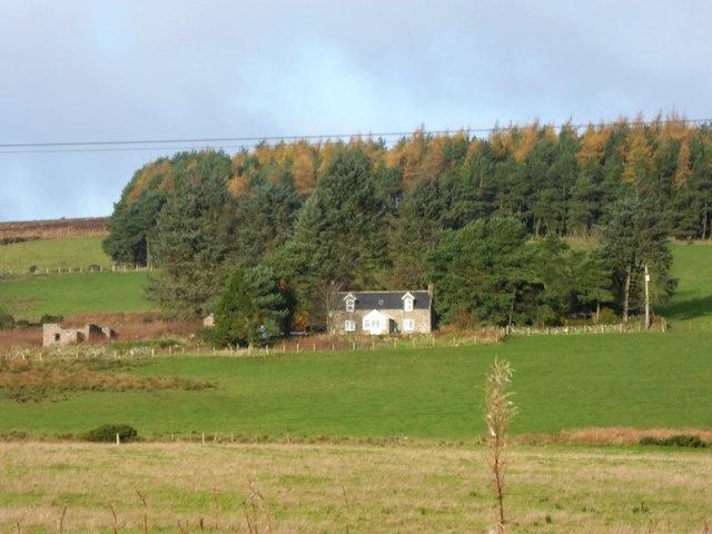 Cairnbank Farm