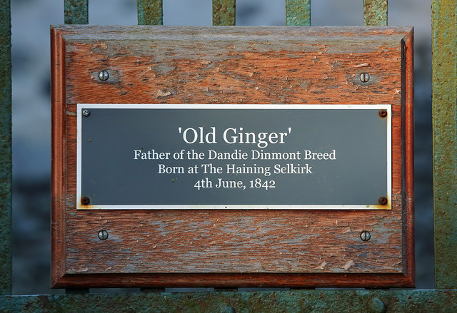Old Ginger plaque at the Haining, Selkirk