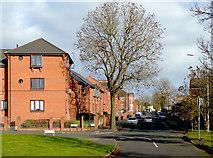 SO9596 : Queen Street in Bilston, Wolverhampton by Roger  Kidd