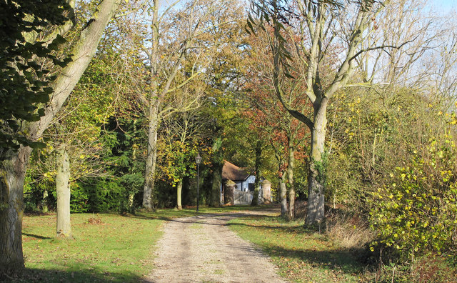 Track to Elm Tree House, Roxwell