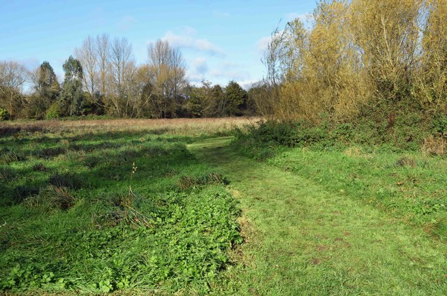 Mown path on Langel Common, Witney, Oxon