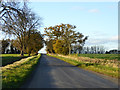 TL1282 : Road towards Great Gidding by Robin Webster