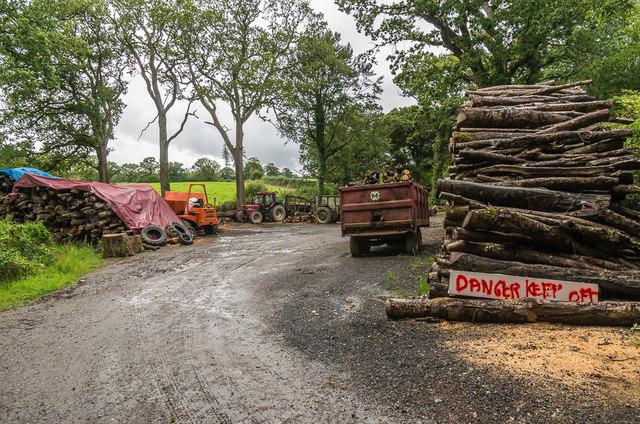 Timber stacks