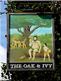 SO9596 : The Oak and Ivy pub sign in Bilston, Wolverhampton by Roger  Kidd