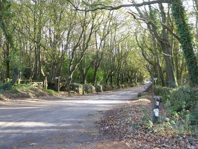 Cot Road