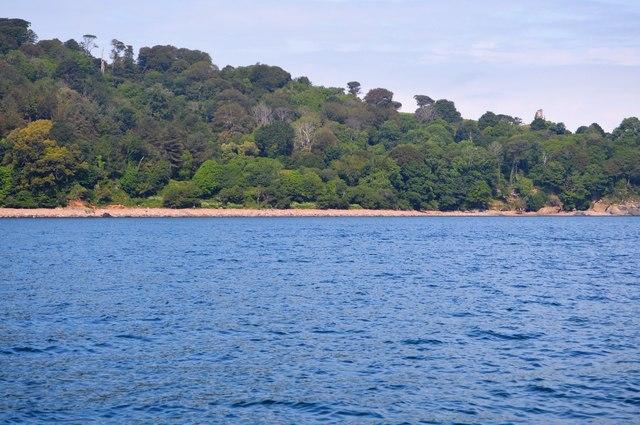 Wooded coastline