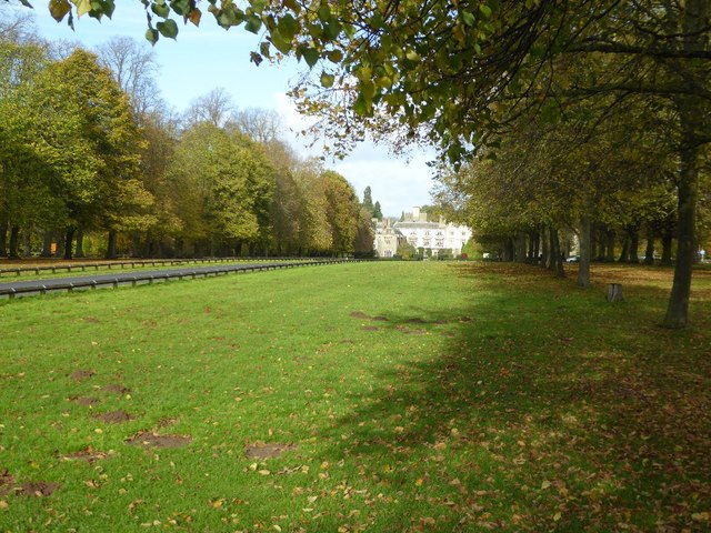 Avenue and Drive, Coombe Abbey
