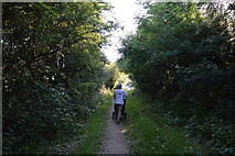 SP4408 : Thames Path by N Chadwick