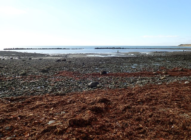 View south towards the sheltered moorings at Templetown Beach