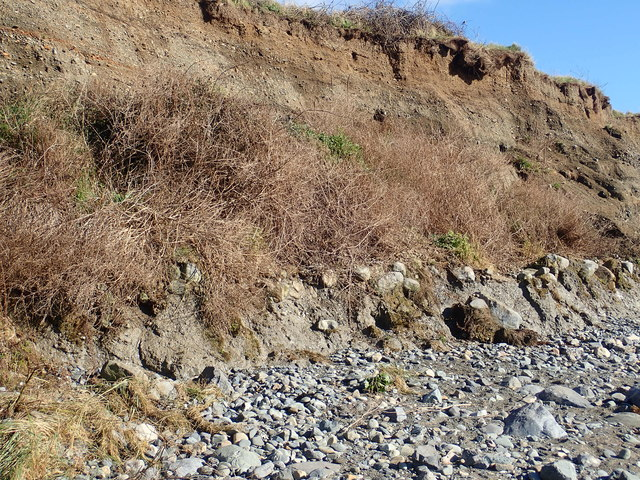 The four facies of the cliffs at Templetown Beach