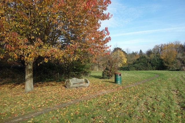 Peggy Bedford Biodiversity Site