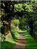 SJ9922 : Canal towpath south of Great Haywood Junction, Staffordshire by Roger  Kidd
