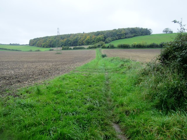 Bridleway to Bubholts
