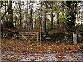 SD5475 : Stile and Gate near Henridding by David Dixon