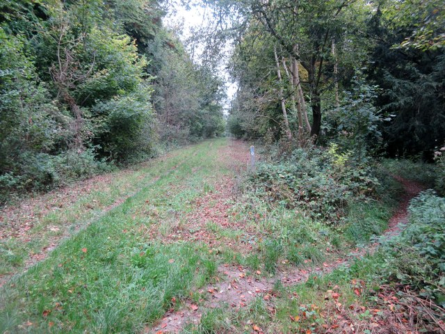 Monarch's Way follows bridleway