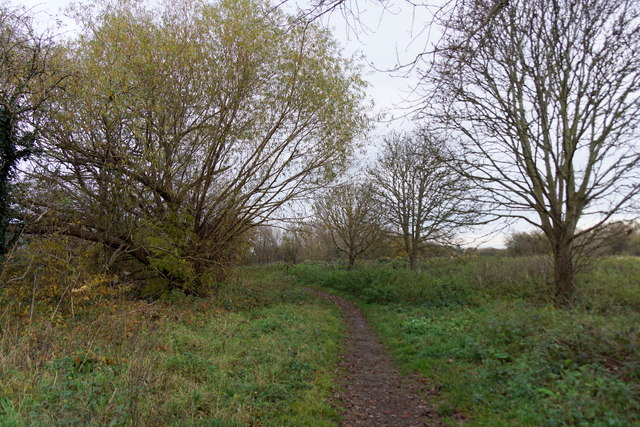 Molesey Heath Nature Reserve