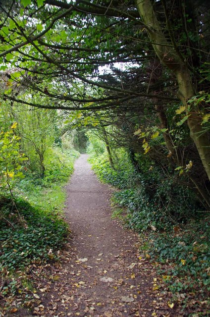 IOW Coastal Path