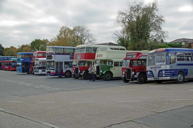 A Bevvy of Buses