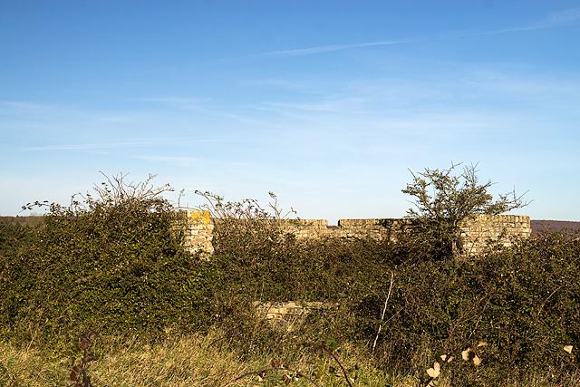 Halnaker Hill WWII RDF station - HFDF #3