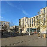 TL4259 : Eddington: open space at Wileman Way by John Sutton