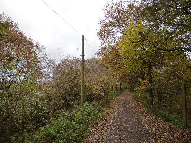 Whitegate Way looking east at Catsclough