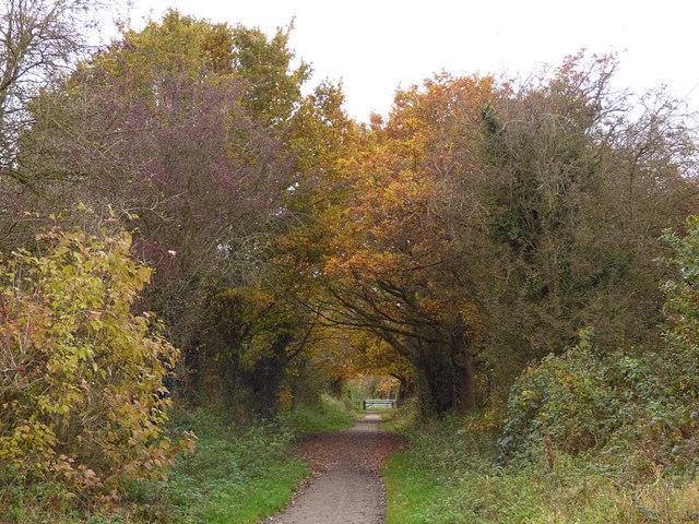 Whitegate Way approaching Catsclough Crossing